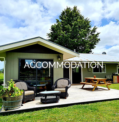 Accommodation Kakahi / Taumarunui - Rua Awa Lodge